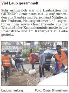 2015_11_19_ZvW_Schorndorf Aktuell_Laubsammlung